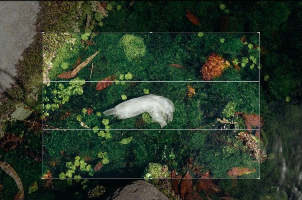 トリミング 作例 クローズアップ 写真 構図 風景 基本