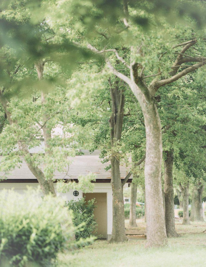 RF 85mm f1.2L 風景 landscape レビュー 作例