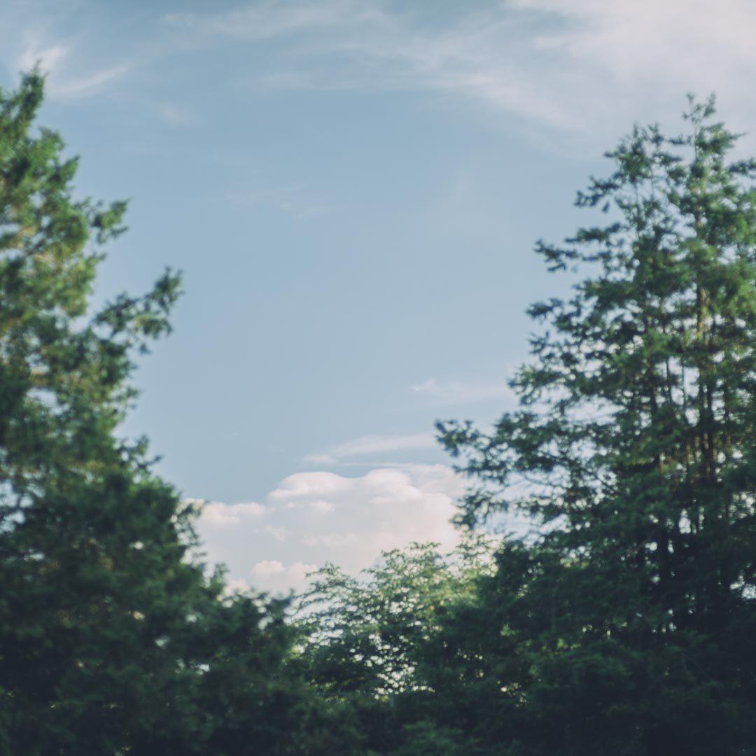 LEICA SL noctilux 50mm f0.95 asph 風景 ライカ ライカsl