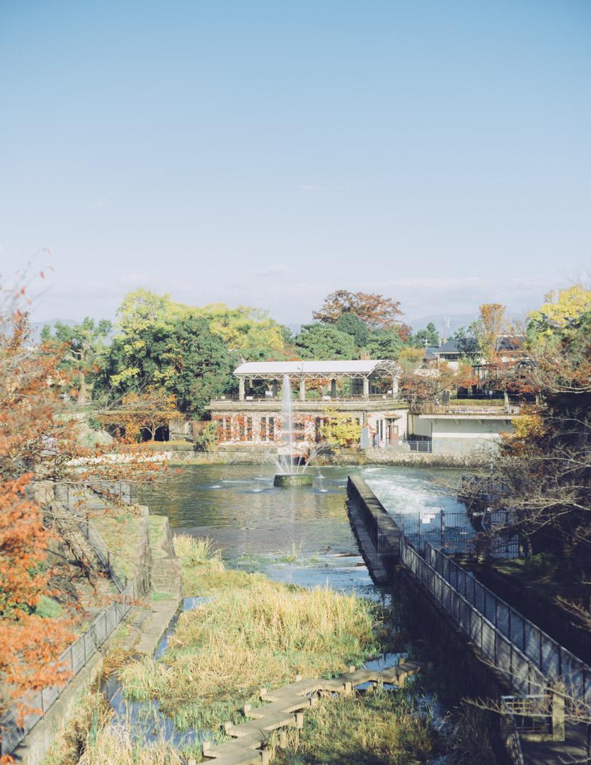 noctilux 50mm f0.95 asph. 作例 単焦点 レビュー 京都 Kyoto 疎水 風景