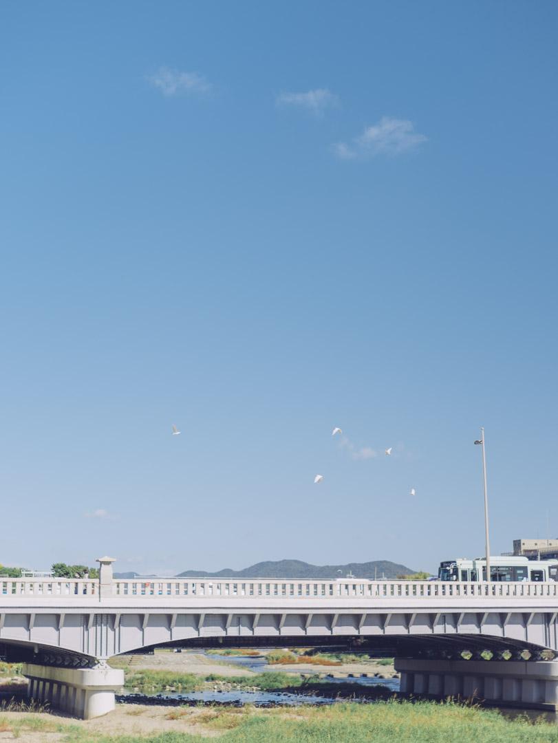 noctilux 50mm f0.95 asph. 京都 Kyoto ノクティルックス 鴨川 出町柳 Kamo River