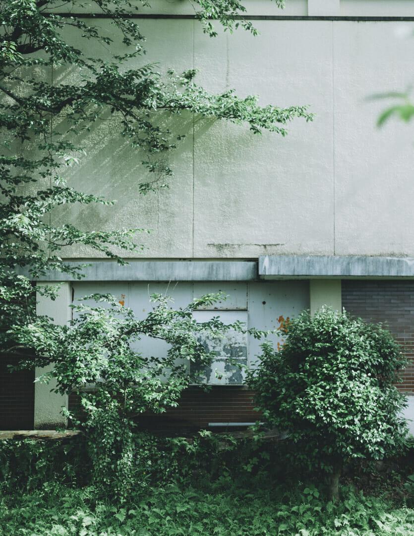 Nikon Df AF-S NIKKOR 50mm f1.8 風景 作例